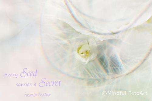 every seed carries a secret